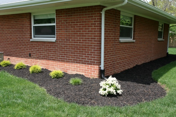 Landscaping: The Pros and Cons